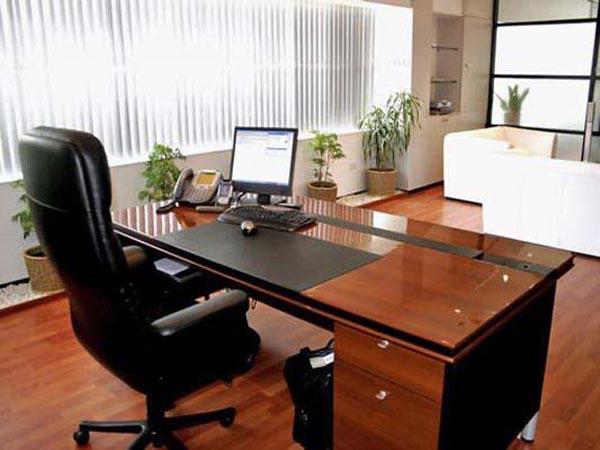 Bố trí bàn vi tính trong văn phòng cũng nên sử dụng đồ dùng văn phòng phẩm, cây xanh