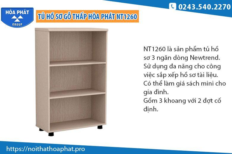 Tủ hồ sơ thấp NT1260